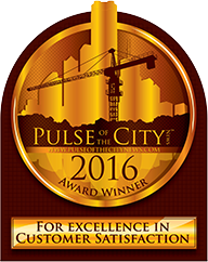CZ Electric Pulse of the City Award 2016